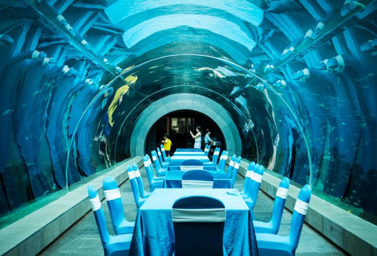 Ресторан-в-океанариуме-768x523